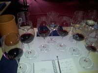 שולחן טעימות יינות יקבי דילון