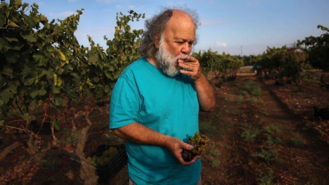 """בשבת 11.3.17 תתקיים ביקב מכירה מיוחדת של יינות, שכל הכנסותיה (מינוס המע""""מ) יועברו למחלקת הרווחה של המועצה האזורית מטה יהודה"""