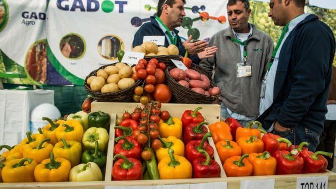 תערוכת החקלאות הגדולה בישראל