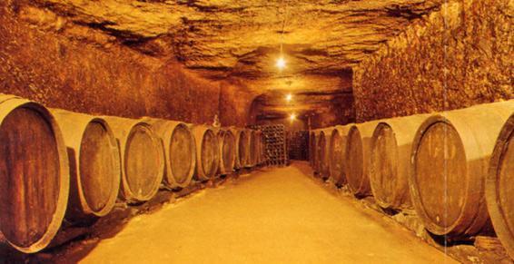 הקרקע מאפשרת לחצוב מערות ענק מתחת לכל יקב, שם מאכסנים את היין