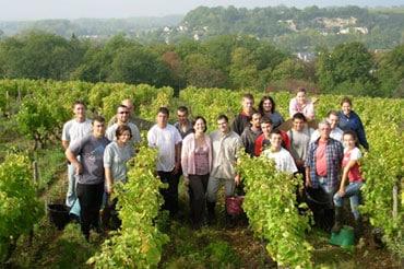 יקב שמוביל קו חדש של יינות חדים ומקסימים