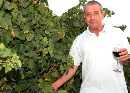 """צחי דותן מנכ""""ל מועצת גפן יין – הוביל מאבק עיקש מול משרד החקלאות ומשרד הבריאות"""