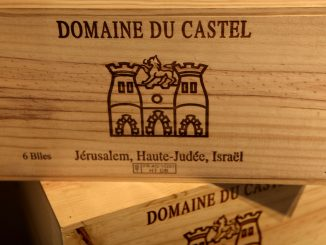 """הרכיבים בסמל היקב הם טירת הקסטל ושלושה צריחים ושערים (ילדי בן-זקן: אילנה הבכורה, אריאל המנכ""""ל, איתן סמנכ""""ל תפעול ויינן), והלביא של ירושלים"""
