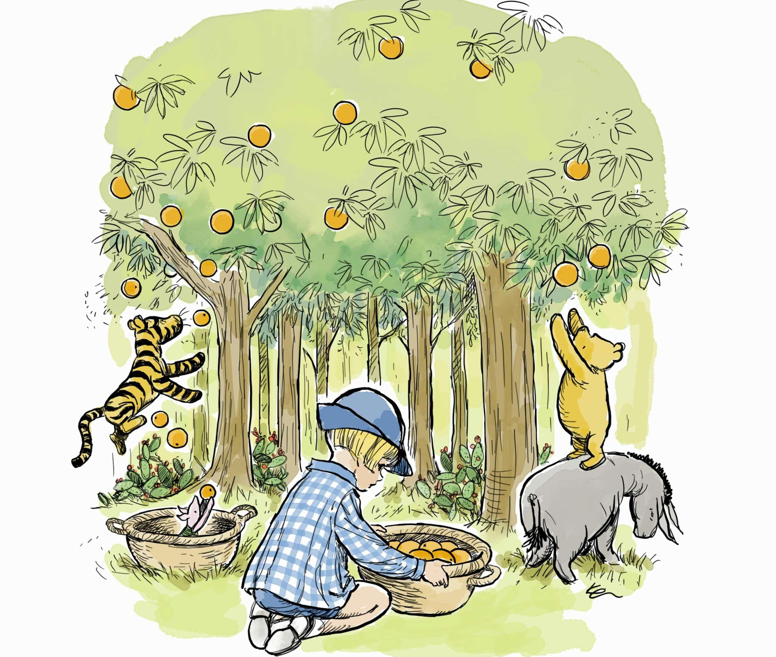פו הדב וחבריו קוטפים תפוזים בפרדס בקיבוץ