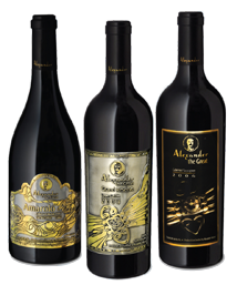 היין יושן 48 חודשים בחביות עץ אלון