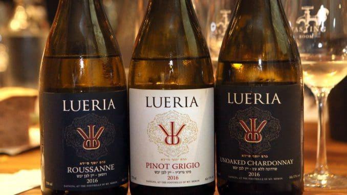 רוסאן 2016: יין שעדיין לא כל כך מגובש ומוכן, צריך עוד קצת זמן בבקבוק