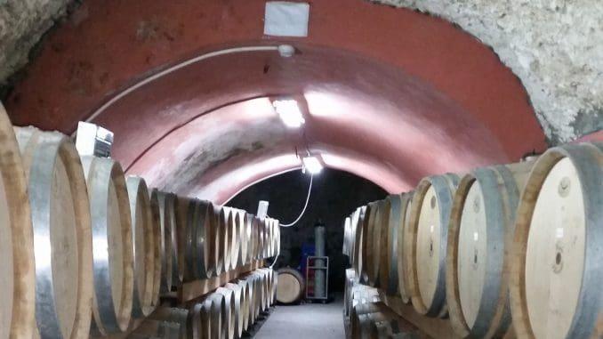 הרבה חביות יין מחכות בתור להידחס לתוך הבקבוקים