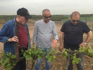ששון בן אהרון (במרכז) יינן יקב מוני, עם שקיב ערטול (מימין) אחראי כרמי היקב, ומיכאל (מימי) בן יוסף