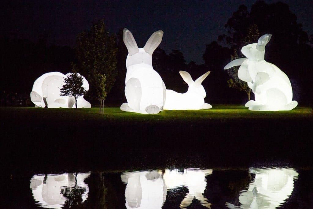 שישה שפנים מוארים ענקיים של האמנית האוסטרלית אמנדה פארר יוצגו באזור גן הבונים
