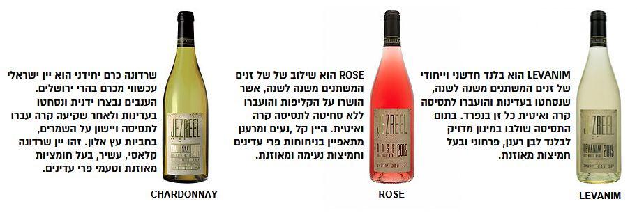 יקב יזרעאל LEVANIM: יין שהשיר רגל פה רגל שם מתאים לו בול