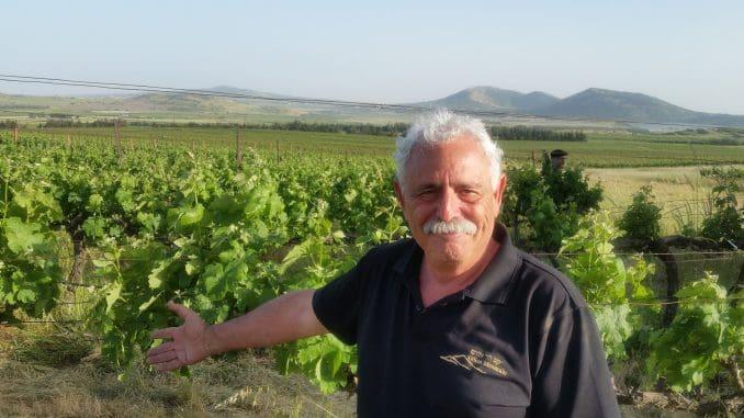 """""""היינות שלנו נולדים מתוך אהבה, יצירתיות ומחויבות לאיכות היין הגבוהה ביותר"""", מעיד מיכאל אלפסי על היינות שמיוצרים ביקב הר אודם"""