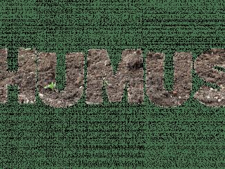 העדות הראשונה לצריכתו של חומוס היא מלפני 7,000 שנה