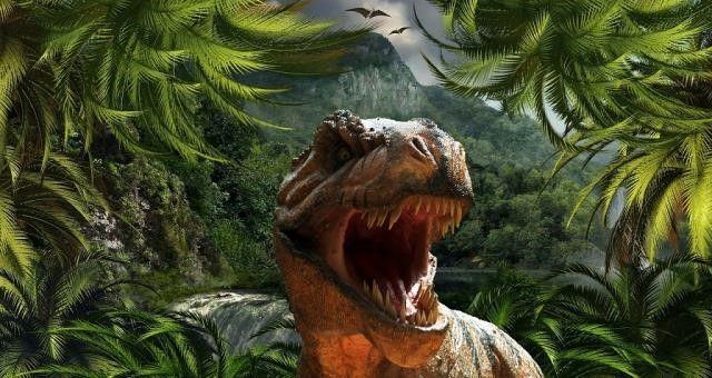 לקבל הסברים על מגוון סוגי הדינוזאורים וההבדלים ביניהם
