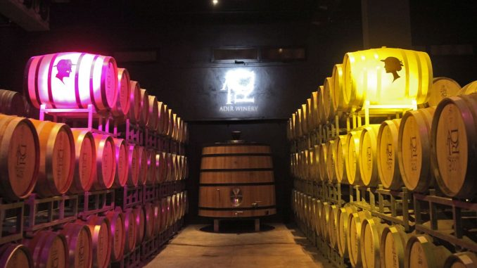 המיצג בחדר החביות: לדבר יין אל מי שלא מבין יין