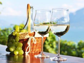 הדרכה וטעימת יינות בבר יין, פלטת גבינות גליליות וישיבה בסוכה