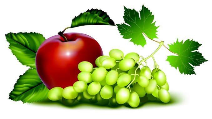 להגיש בצורה צבעונית ויפה צלחת פירות וירקות אחר הצהריים