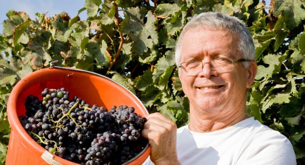 איציק כהן - כרמים באזור יין מוערך