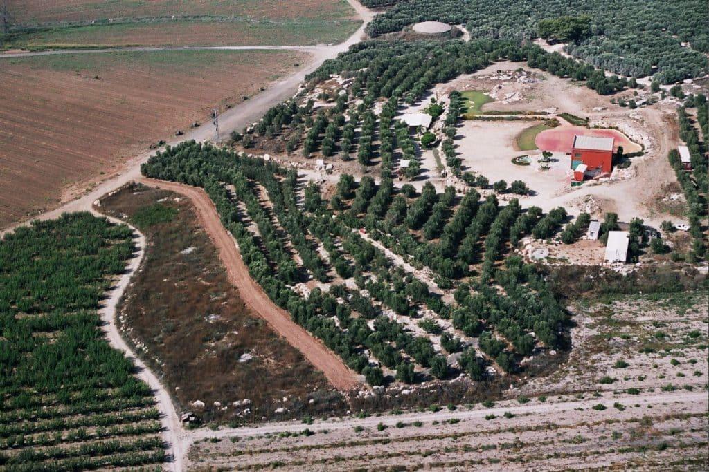 המפעל לייצור שמן זית והכרם ממוקמים בפסגת תל גזר (בסמוך לאורוות שלמה המלך), משקיפים פנורמית לים ועד ירושלים