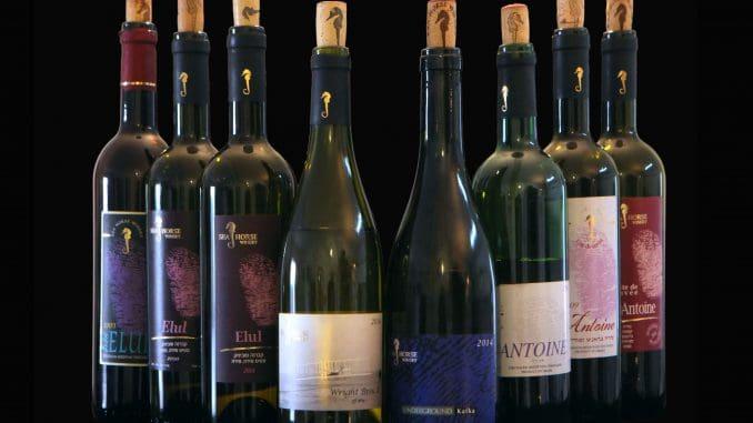 יינות הטעימה של יקב סוסון ים. צילום דוד סילברמן dpsimages