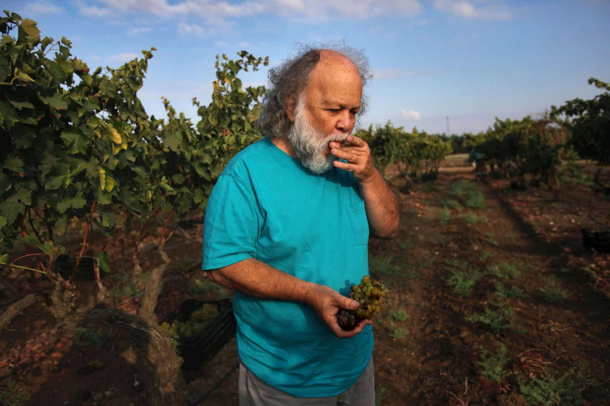 אי אפשר להישאר אדיש אל זאב ואל יינותיו. או שאוהבים או שלא. צילום דוד סילברמן dpsimages
