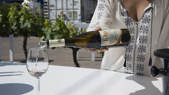 Tulip White Franc 2017 חצי יבש. שכבות עדינות של שוקולד כהה נכנסות לפעולה כשהיין נפתח קצת. שאפו. צילום איל גוטמן