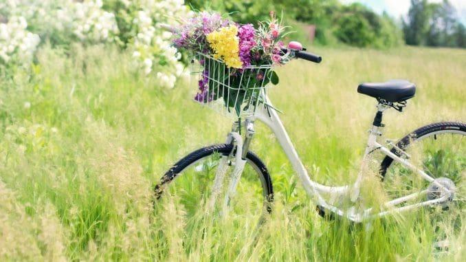 נצלו את מזג האוויר האביבי גם לרכיבה על אופניים. צילום pixabay