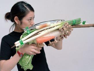 צויושי אוזוואה – נשק ירקות מרק קציצות דג מקרל טוקיו 2001