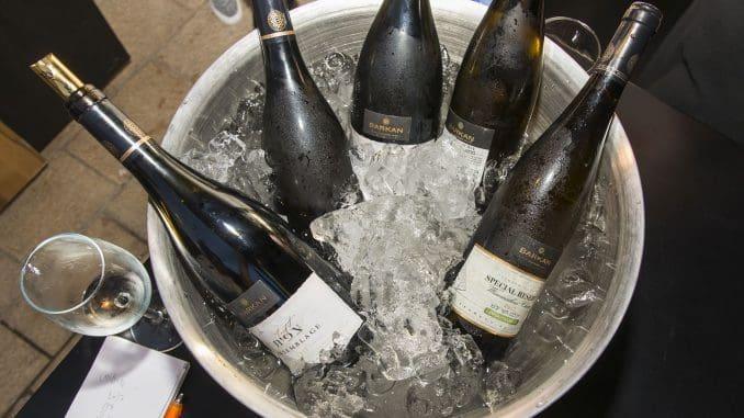בקיץ הזה שותים יינות לבנים ורוזה. צילום איל גוטמן