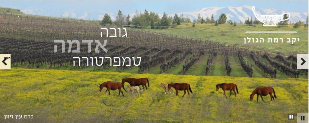 הגדרת טרואר ביקב רמת הגולן. צילום מהאתר