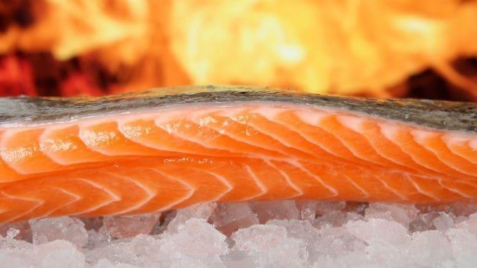 3 דג סלמון עשיר באומגה