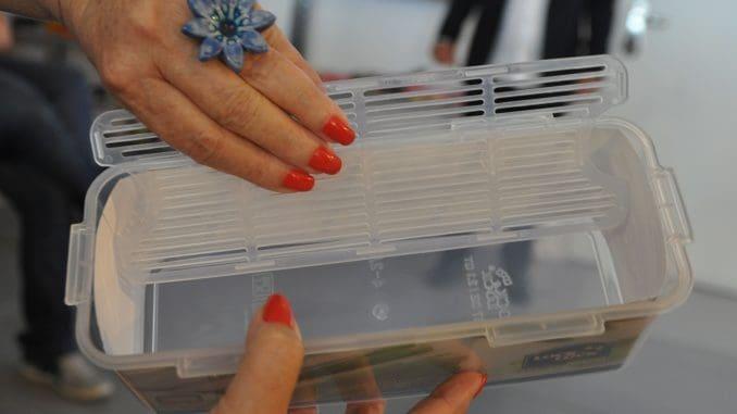 קופסה מיוחדת השומרת על אורך החיים של הירקות במקרר. צילום איריס לוי