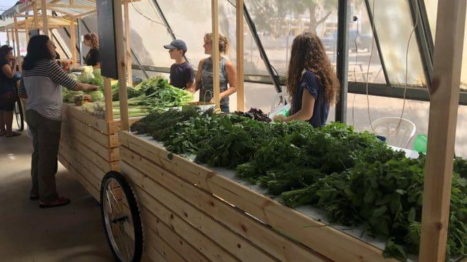 אשכול Market ממוקם בתוך חממה מעוצבת. צילום דוברות אשכול