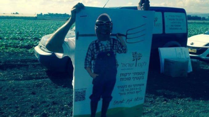 ארגון לקט ישראל הוא בנק המזון הלאומי, ארגון גג וכתובת אחת לכל צורכי הביטחון התזונתי בישראל. צילום מדף הפייסבוק