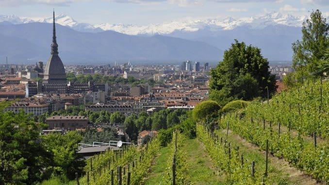 יינות ברולו (Barolo) מגיעים מהאזור הצפון מערבי של פיימונט. צילום pixabay