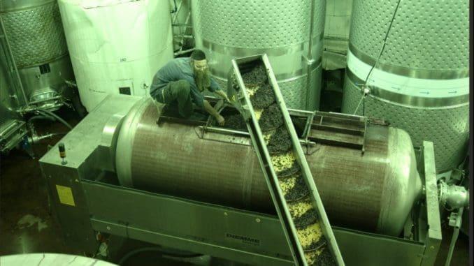 יקב אור הגנוז מייצר יין עשרות אלפי בקבוקי יין בשנה עבור יקבים אחרים. צילום מאתר היקב
