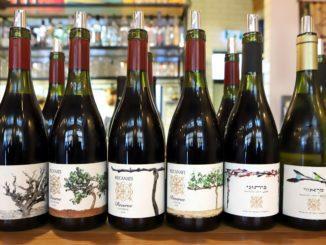 השקת יינות רקנאטי מזנים ארץ ישראליים ויינות כרמים יחידניים. צילום דוד סילברמן dpsimages