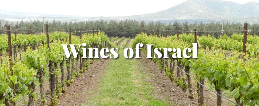 צילום Wine School of Philadelphia