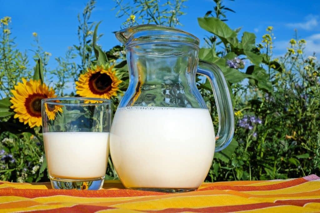 חלב פרה הוא מקור מאוזן ומלא לשומן, חלבון ופחמימות. אולם אם אינכם יכולים לשתות חלב רגיל או רגישים ללקטוז, חלב סויה הוא הבחירה הטובה ביותר שתספק לכם חלבון וסידן