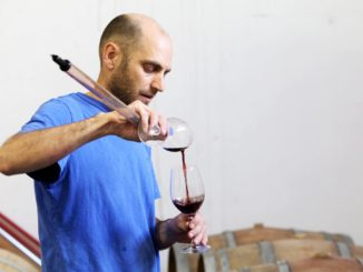 הגישה של רמי בר-מאור לגידול הענבים בכרמים: להשאיר לטבע לבטא את עצמו באופיו האמיתי. תמוז 2016 הוא יין מרענן 100% ענבי מרסלאן. צילום מדף הפייסבוק