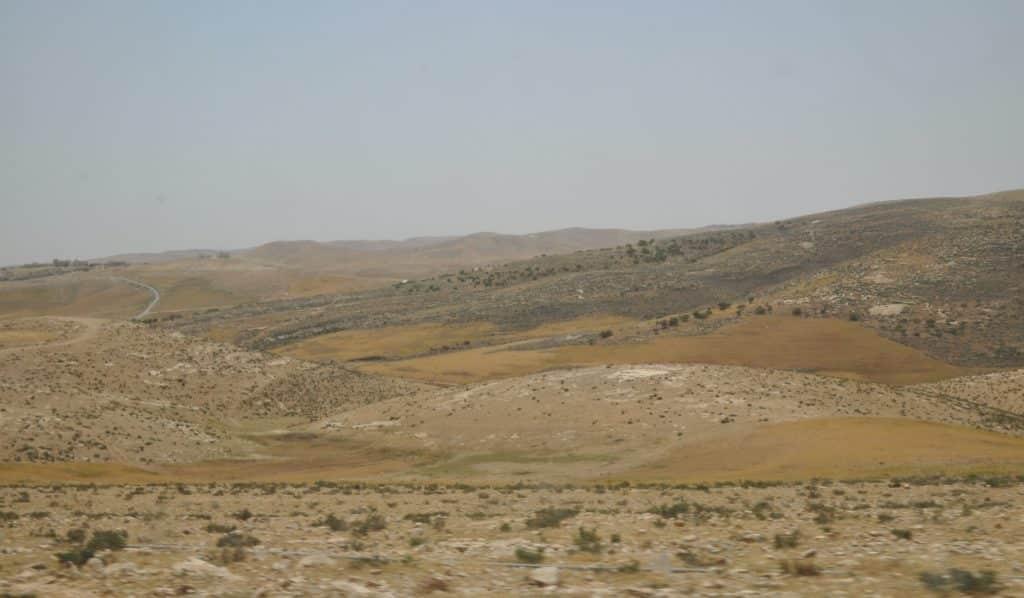 זה המדבר. צילום איריס לוי