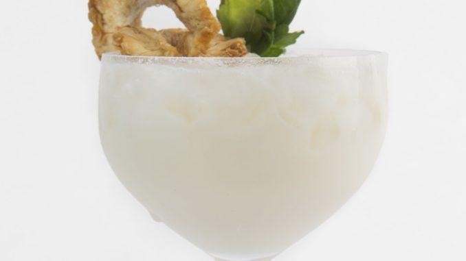 HOLIDAY COLADA - מסננים לכוס עם קרח ומקשטים עם אננס מיובש. צילום ליאור גולדסאד