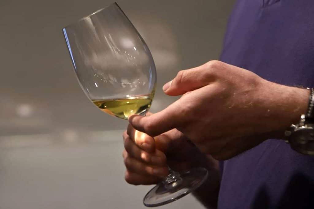רוצים לשפוך את הכוס עם כל היקב. צילום דוד סילברמן dpsimages