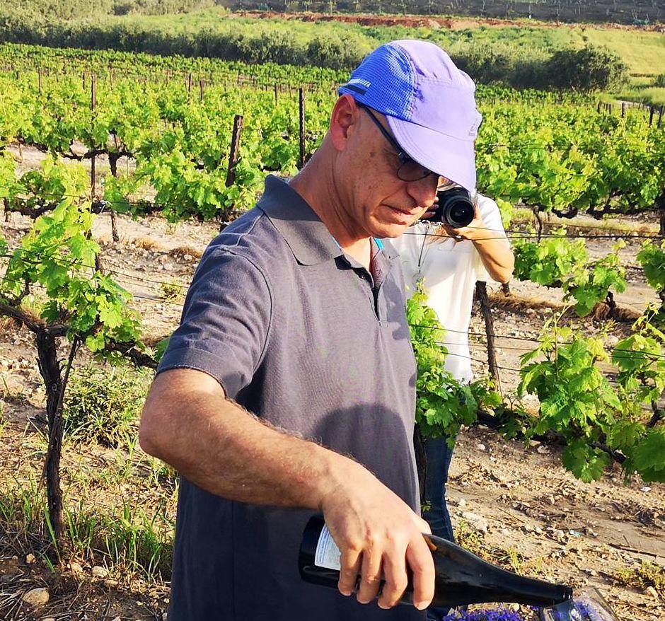זורי ארקין – למזוג את היין בכרם. צילום ישראל פרקר