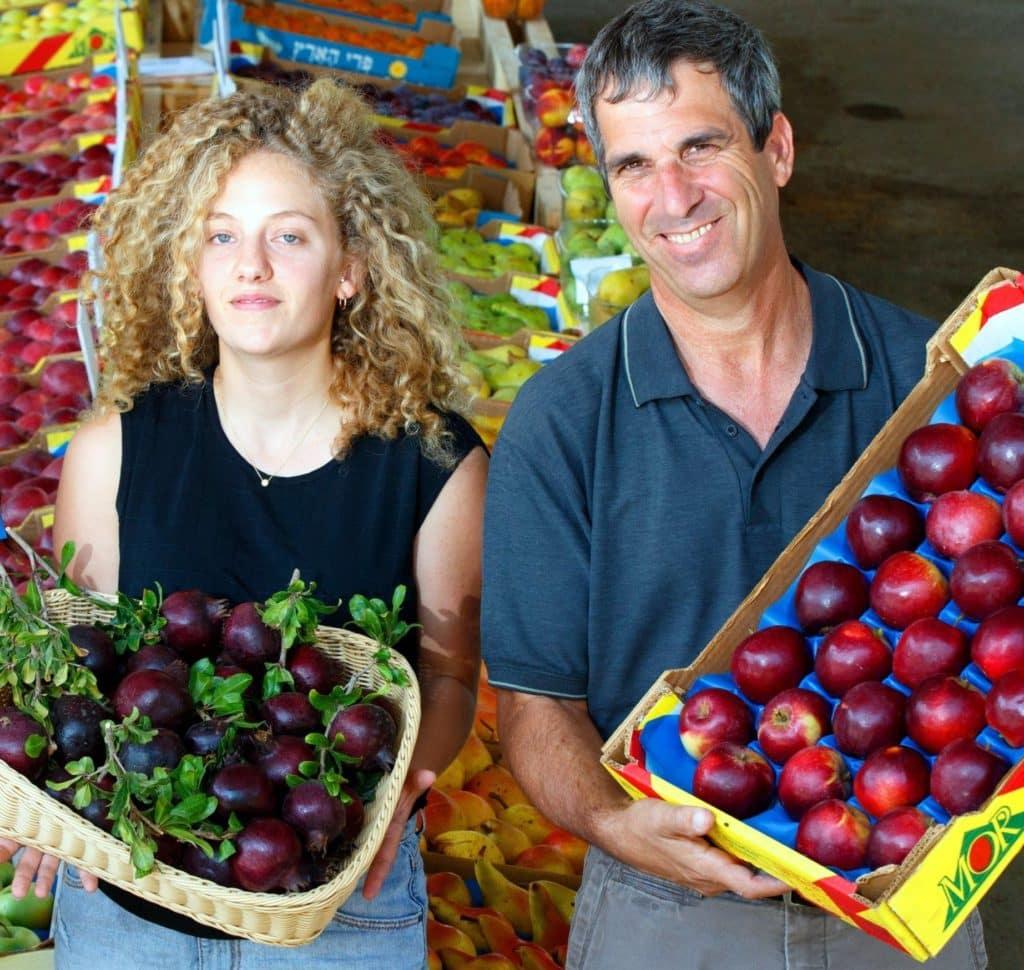החוקרים לירי סנדל ושמעון זית מציגים זני תפוחים ורימון שחור לראש השנה. צילום החברה לפיתוח הגליל