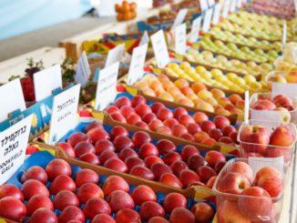 """בתמונה זני תפוחים חדשים המפותחים במו""""פ צפון. צילום החברה לפיתוח הגליל"""