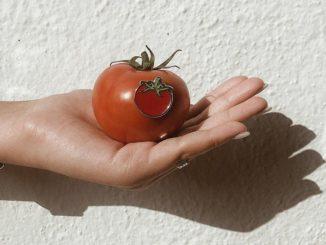 """ציטוטים של אייל שני על עגבנייה (מתוך ויקיציטוט): """"העגבנייה קמצנית פה מדי""""; """"שנינו יודעים שאין דבר נורא כמו מוות של עגבנייה""""; """"עגבנייה היא כמו אישה."""