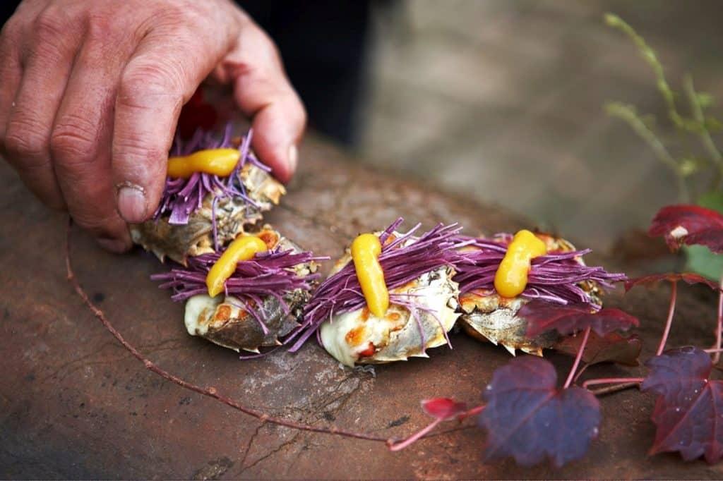 השף הנודד ((The Wandering Chef -ג'יהו אים שידוע בכינוי 'השף הנודד' נוסע ברחבי דרום קוריאה ומחפש אחר מרכיבים מיוחדים בעלי יכולת ריפוי. צילום סאק הו ג'ונק