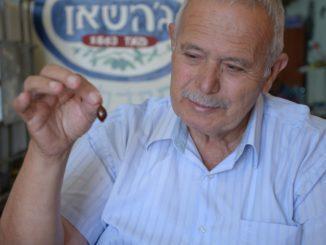 בתמונה אבו נאסר – ראש משפחת ג'השאן שמפעילה את המשק המשפחתי במושב כלנית. צילום רביע ג'השאן