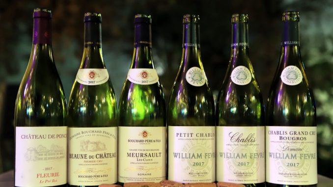 יינות הטעימה של דרך היין. צילום דוד סילברמן dpsimages