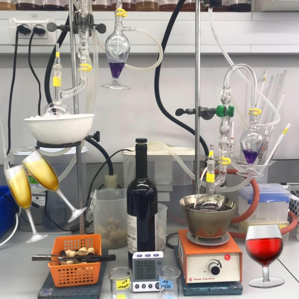 מעבדת השירות לבדיקת יין ומשקאות במכללה האקדמית תל-חי. צילום מדף הפייסבוק
